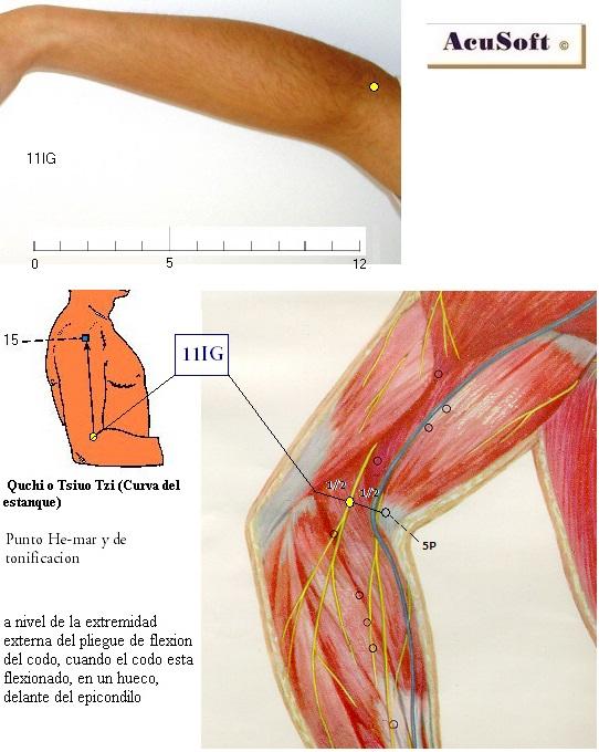 articulația este umflată și dureroasă pe deget lichid în articulația genunchiului fără durere